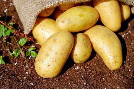 potatoes-144248